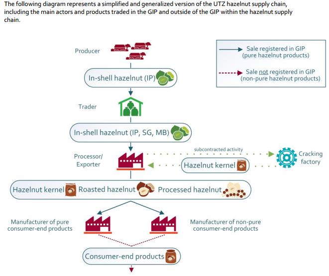 hazelnut supply chains